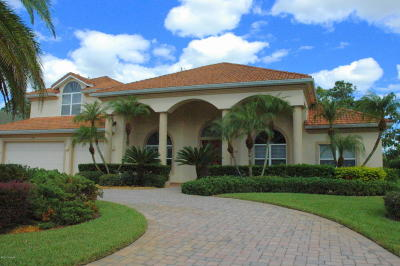 Spruce Creek Fly In Single Family Home For Sale: 1943 Southcreek Boulevard