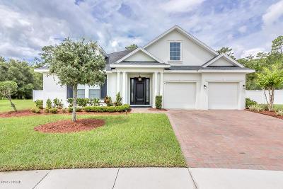 Hunters Ridge Single Family Home For Sale: 8 Dormer Drive