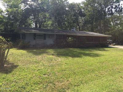Volusia County Single Family Home For Sale: 382 Oliver Drive