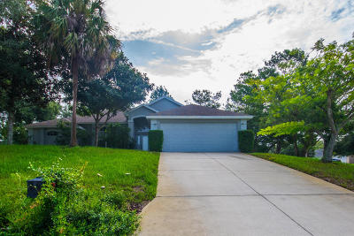 Ormond Lakes Single Family Home For Sale: 19 Cliffside Drive
