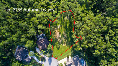 Spruce Creek, Spruce Creek Estates, Spruce Creek Farms, Spruce Creek Fly In, Spruce Creek Village Residential Lots & Land For Sale: 2765 Autumn Leaves Drive