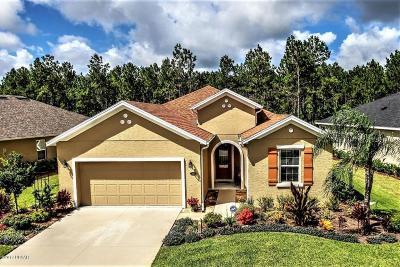 Palm Coast, Flagler Beach Single Family Home For Sale: 121 S Hummingbird Place