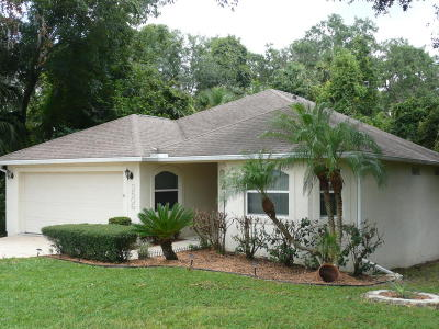 Spruce Creek Fly In Single Family Home For Sale: 2606 Spruce Creek Boulevard