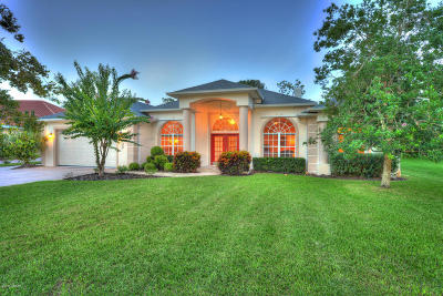 Pelican Bay, Ashton Lakes, Cypress Head, Sabal Creek, Sanctuary On Spruce Creek, Spruce Creek Fly In, Villages Of Royal Palm, Waters Edge Single Family Home For Sale: 3302 Oak Vista Drive