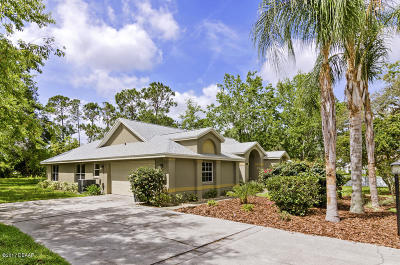 New Smyrna Beach Single Family Home For Sale: 156 Holly Hill Court