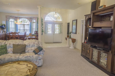Ponce Inlet Single Family Home For Sale: 46 Sundunes Circle