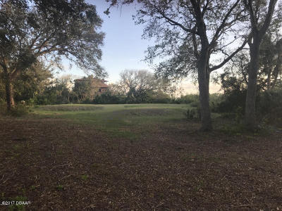 Volusia County Residential Lots & Land For Sale: 102 Oceanview Avenue