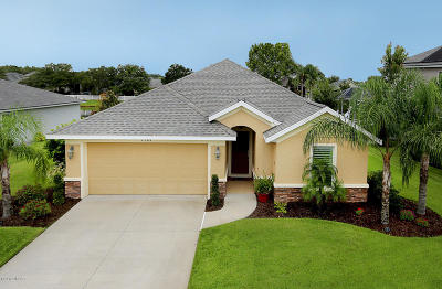 Volusia County Single Family Home For Sale: 1789 Creekwater Boulevard