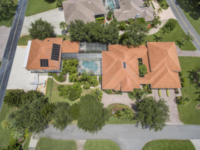 Pelican Bay, Ashton Lakes, Cypress Head, Sabal Creek, Sanctuary On Spruce Creek, Spruce Creek Fly In, Villages Of Royal Palm, Waters Edge Single Family Home For Sale: 1705 Spruce Creek Way