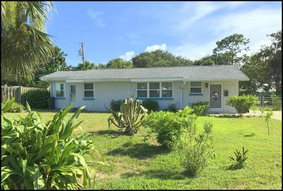 Volusia County Single Family Home For Sale: 64 Alamanda Drive