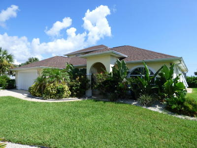 Volusia County Single Family Home For Sale: 151 Heron Dunes Drive