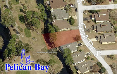 Volusia County Residential Lots & Land For Sale: 281 S Gull Drive