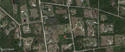 Volusia County Residential Lots & Land For Sale: 379 Sugar Pine Lane