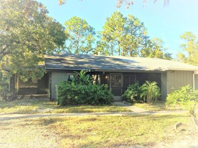 Volusia County Single Family Home For Sale: 119 Cypress Pond Road