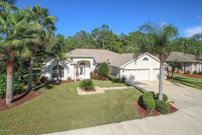Port Orange Single Family Home For Sale: 6465 Cypress Springs Parkway