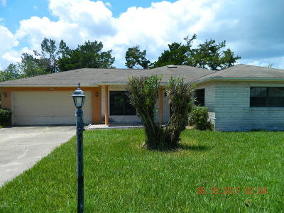 Volusia County Single Family Home For Sale: 2926 Carriage Drive
