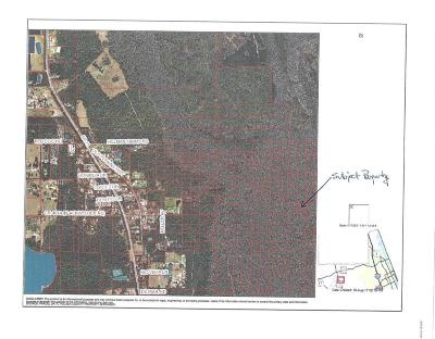 Volusia County Residential Lots & Land For Sale: No Street County