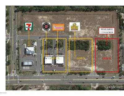 Volusia County Residential Lots & Land For Sale: 3691 S Clyde Morris Boulevard