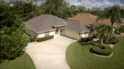 Volusia County Single Family Home For Sale: 4 Lonetree Look