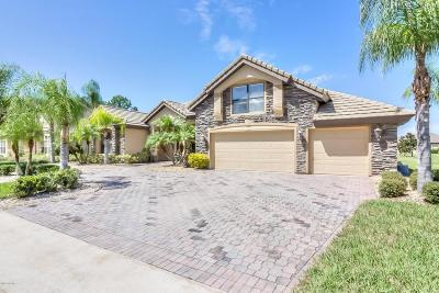 Pelican Bay, Ashton Lakes, Cypress Head, Sabal Creek, Sanctuary On Spruce Creek, Spruce Creek Fly In, Villages Of Royal Palm, Waters Edge Single Family Home For Sale: 6702 Merryvale Lane