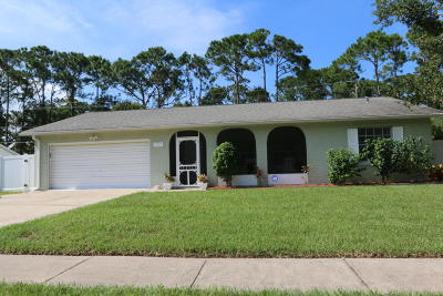 Volusia County Single Family Home For Sale: 1237 Jeffery Drive