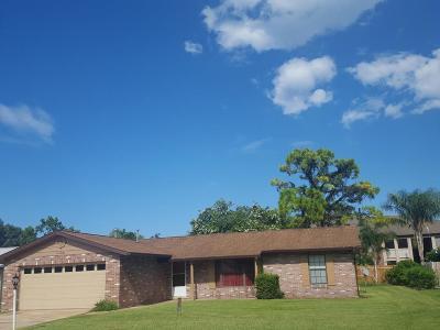 Daytona Beach Single Family Home For Sale: 180 Harpers Ferry Drive