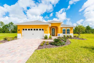 Hunters Ridge Single Family Home For Sale: 20 Huntington Place