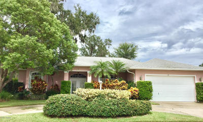 South Daytona Single Family Home For Sale: 153 Bryan Cave Road