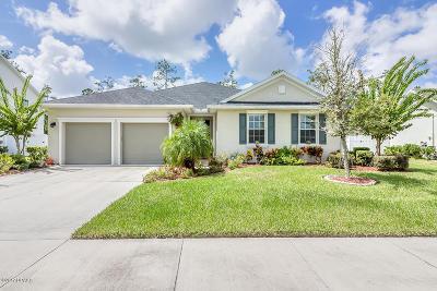 Hunters Ridge Single Family Home For Sale: 91 Abacus Avenue