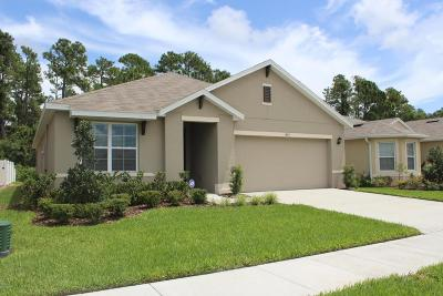 New Smyrna Beach Single Family Home For Sale: 497 White Coral Lane