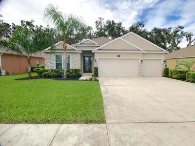 New Smyrna Beach Single Family Home For Sale: 699 Grape Ivy Lane