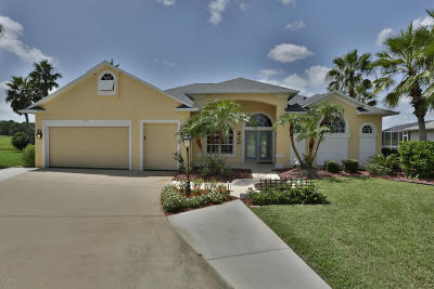 Port Orange Single Family Home For Sale: 3102 Springwater Court