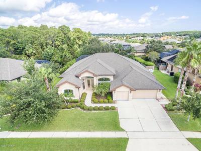 Port Orange Single Family Home For Sale: 6602 Merryvale Lane