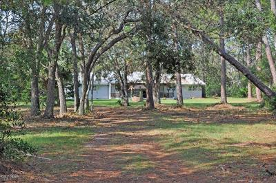 Volusia County Single Family Home For Sale: 1172 Williams Road