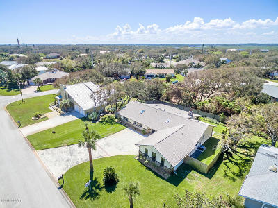 Ponce Inlet Single Family Home For Sale: 71 Buschman Drive