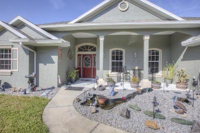 New Smyrna Beach Single Family Home For Sale: 870 Rasley Road