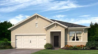New Smyrna Beach Single Family Home For Sale: 2776 Star Coral Lane