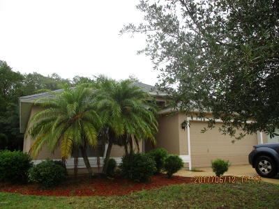 Volusia County Single Family Home For Sale: 6811 Vintage Lane