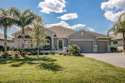 Ormond Beach Single Family Home For Sale: 649 Southlake Drive