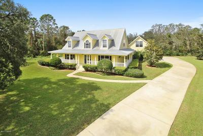 Port Orange Single Family Home For Sale: 2000 Country Farms Road