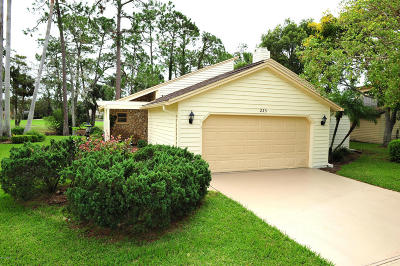 Daytona Beach Single Family Home For Sale: 233 S Gull Drive
