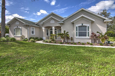 Halifax Plantation Single Family Home For Sale: 1413 Kilrush Drive
