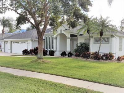 Volusia County Single Family Home For Sale: 6015 Sanctuary Garden Boulevard