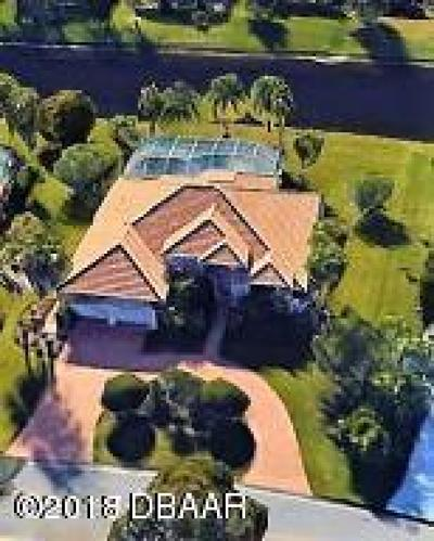 Pelican Bay, Ashton Lakes, Cypress Head, Sabal Creek, Sanctuary On Spruce Creek, Spruce Creek Fly In, Villages Of Royal Palm, Waters Edge Single Family Home For Sale: 1972 Southcreek Boulevard