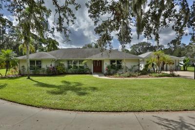 New Smyrna Beach Single Family Home For Sale: 1455 Tumblin Drive