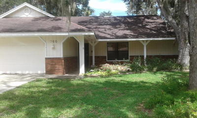 Volusia County Single Family Home For Sale: 360 Sagewood Drive