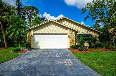 Volusia County Single Family Home For Sale: 115 Sea Duck Drive