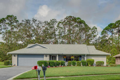 Volusia County Single Family Home For Sale: 1017 Whiporwill Drive