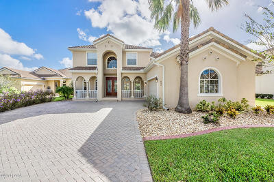 New Smyrna Beach Single Family Home For Sale: 495 Venetian Villa Drive