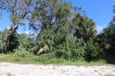 Volusia County Residential Lots & Land For Sale: S Duss Street